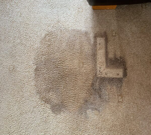 End of Tenancy cleaning image